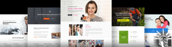 Astra Pro Theme v3.3.1 NULLED